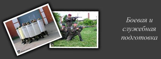 Боевая и служебная подготовка